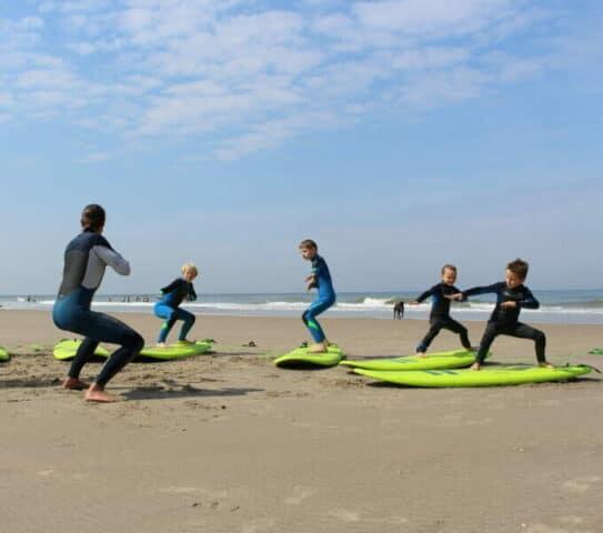 Surfen bso 2Papegaaien vogelwijk Den Haag